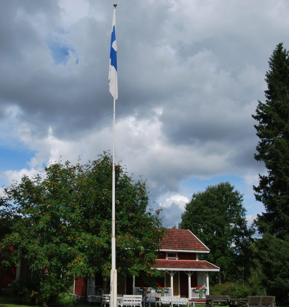 lippu_salossa_pienennetty